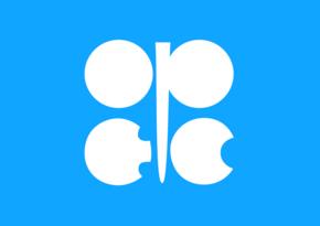 OPEC+ monitorinq komitəsinin növbəti iclasının tarixi məlum olub