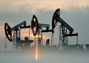 Saxo Bank: Oil price may exceed $ 60 in 2021