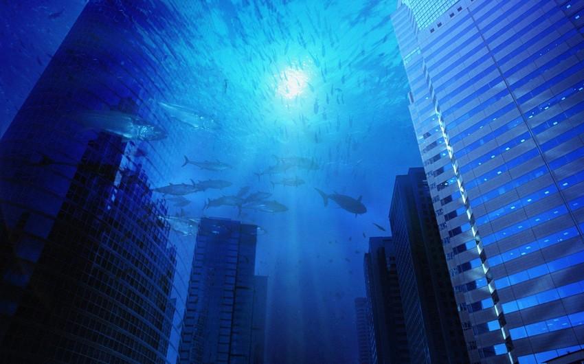 2060-cı ildə bir milyarddan çox insanın yaşadığı ərazilər su altında qalacaq