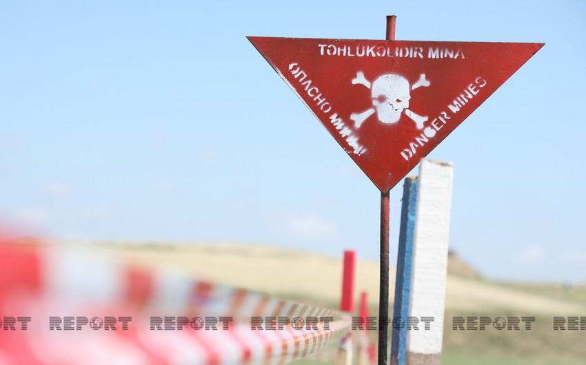 BMT-nin İnsan Hüquqları Şurasında Ermənistan bütün mina xəritələrini Azərbaycana verməyə çağırılıb