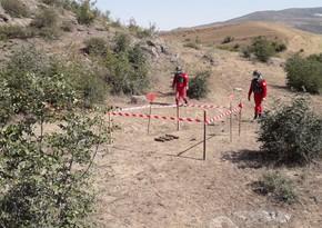 DSX Ağstafada 7 top mərmisi aşkarladı