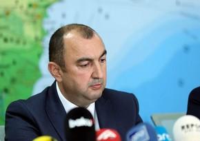 На оккупированные территории приходится 25% лесов Азербайджана