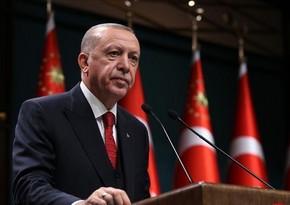 Турция объявила послов десяти стран персонами нон грата