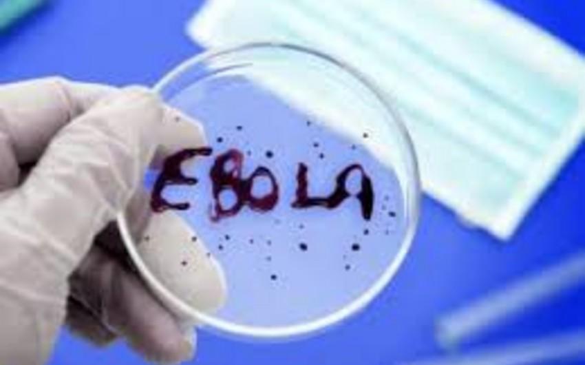 Две вакцины от Эболы признаны безопасными в США