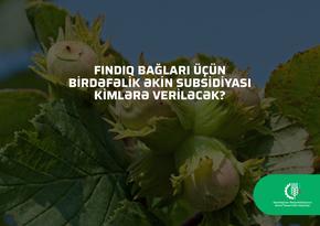 Fındıq bağları üçün birdəfəlik əkin subsidiyası kimlərə veriləcək?