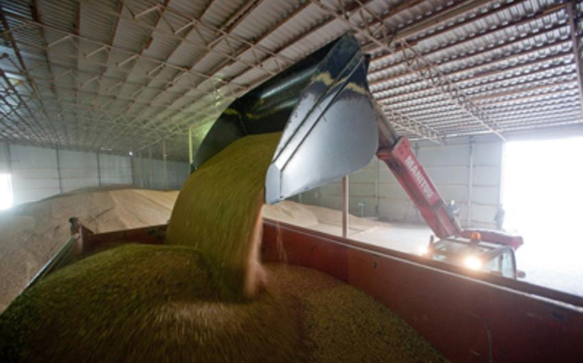 Azərbaycan Qazaxıstandan 38,7 min ton buğda idxal edib