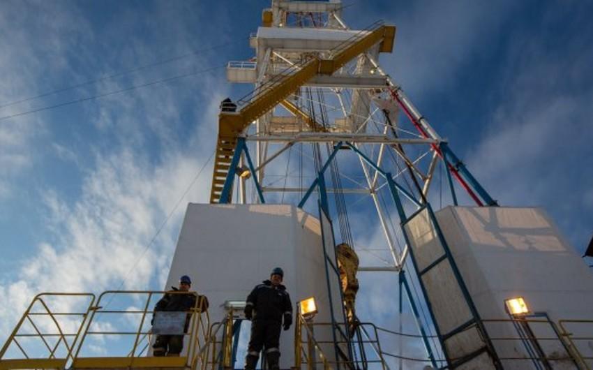 Иранский министр: РФ не стоит беспокоиться из-за доли на рынке газа