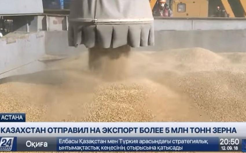 Mukan Abdiyev: Azərbaycan Qazaxıstandan ildə təqribən 600 min ton taxıl idxal edir - VİDEO