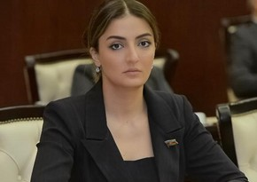 Konul Nurullayeva: 'Targeting of peaceful population by Armenian troops should be strongly condemned'