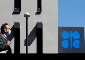 OPEC + discusses restrictions on oil production in 2021