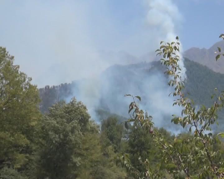 В лесах на территории Огузского района произошел пожар