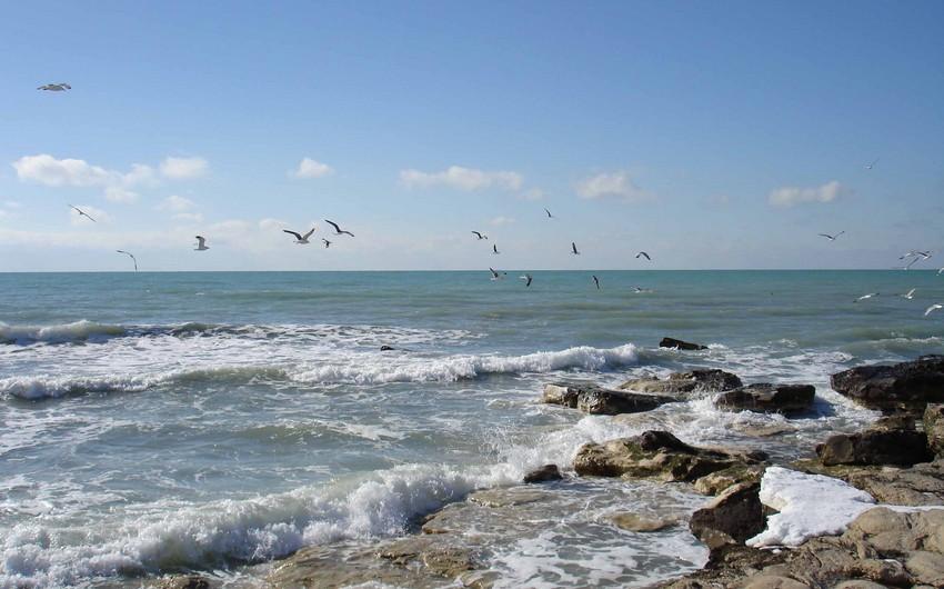 Rusiya Nazirlər Kabineti Xəzər dənizi bioresurslarının qorunması haqqında qanunun ratifikasiya olunmasını təklif edib