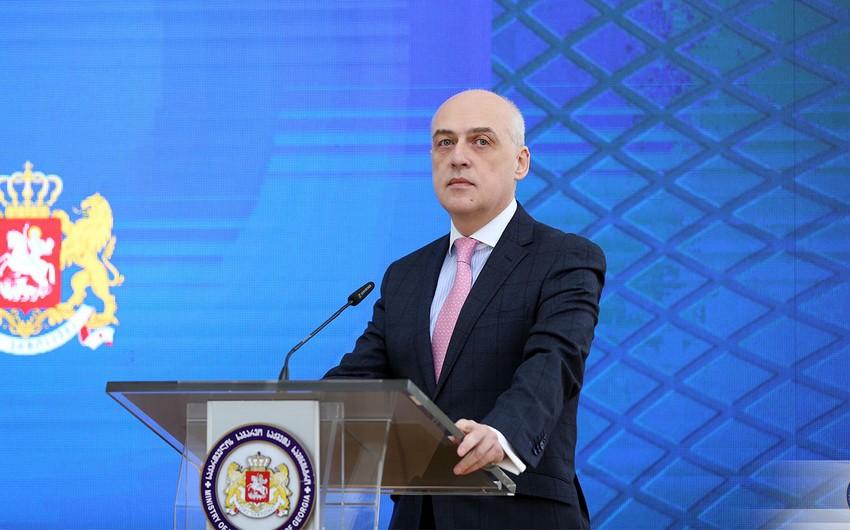 Глава МИД Грузии едет в Украину