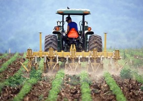 Azərbaycan Gürcüstandan traktor idxalını 2,7 dəfə azaldıb