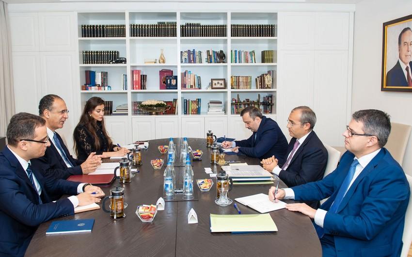 Vergilər naziri  IMF-nin Azərbaycan üzrə missiyası ilə görüşüb