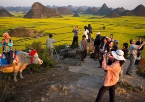 Kənd turizminin inkişafına dəstək üçün portal yaradılacaq