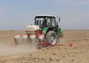 Səfir: Azərbaycan tezliklə İranla birlikdə traktor istehsal edəcək