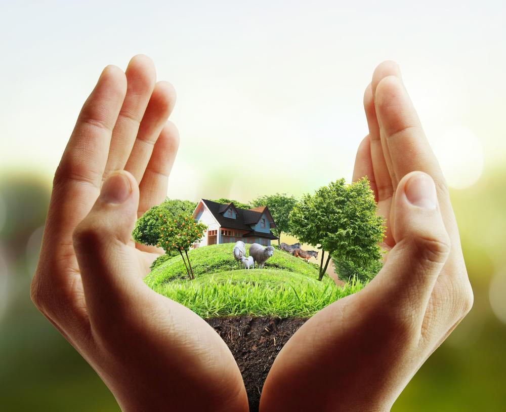 Утверждена Форма экономического обоснования землепользования
