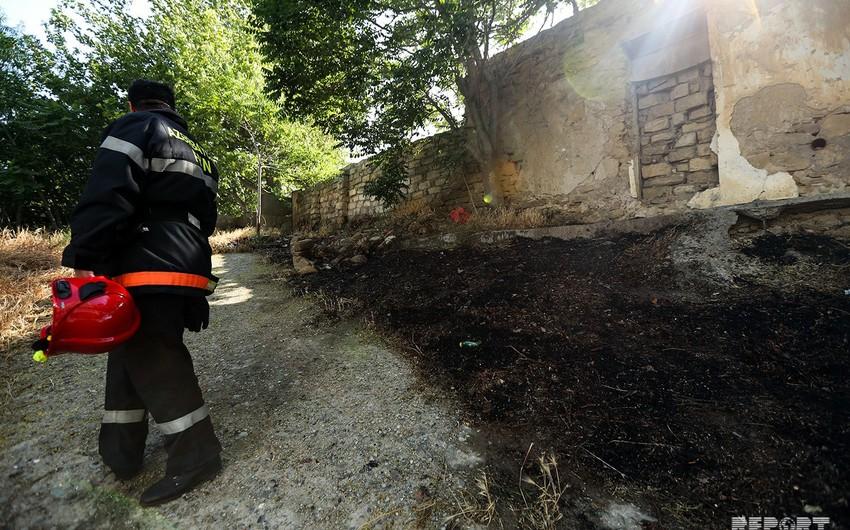 Bakıda ağaclıq sahədə baş verən yanğın söndürülüb - FOTO - YENİLƏNİB-2