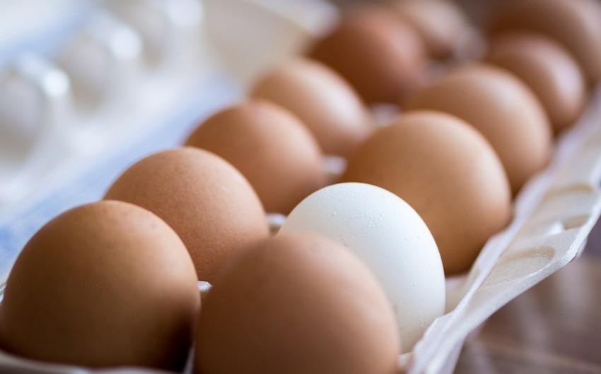 Azərbaycanda yumurtanın qiyməti bahalaşıb