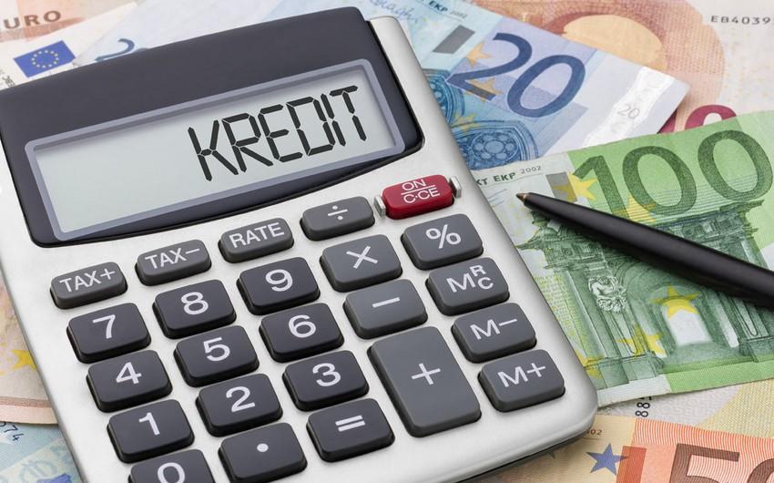 MM üzvü: Kiçik biznesin kreditinə təminatın 70 %-ni dövlət verə bilər