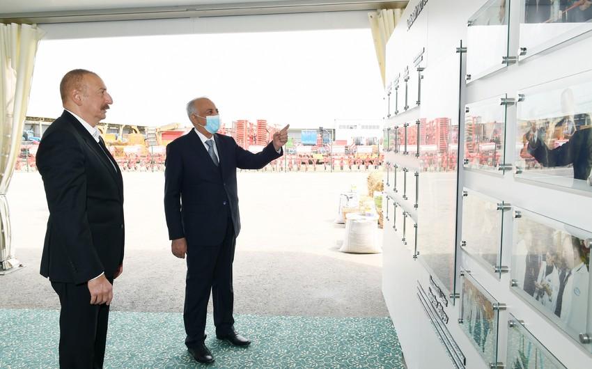 """İlham Əliyev """"Azərsun Şamaxı Aqropark""""ın açılışında iştirak edib - YENİLƏNİB"""