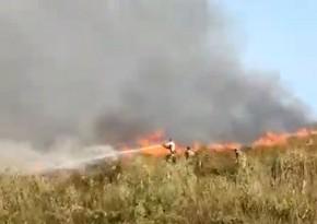 FHN: Qızılağac Milli Parkında yanğının söndürülməsini küləkli hava çətinləşdirir