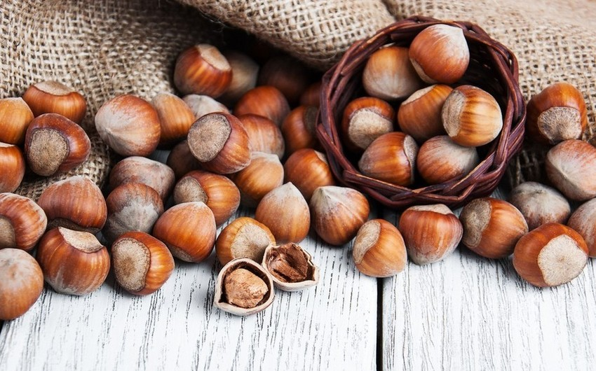 Italy and Germany plan to increase hazelnut imports from Azerbaijan - EXCLUSIVE