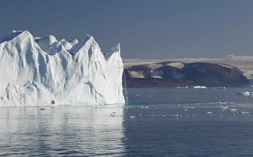 Antarktikada rekord temperatur qeydə alındı