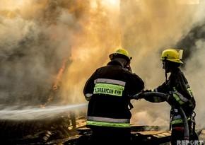 Пожар в бакинском парке потушен