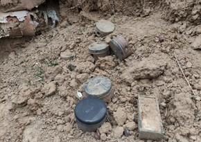 Полицейские обнаружили мины в Ходжавенде