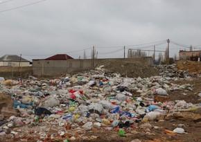 Ekologiyaya ziyan vuran 17 nəfər barədə inzibati tənbeh tədbirləri görülüb