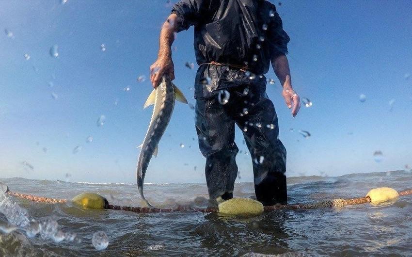 Полиция предупредила лиц, занимающихся незаконной ловлей рыбы