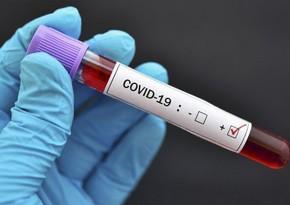 Названа положительная сторона мутации коронавируса