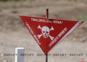 На освобожденных территориях Азербайджана выявлено еще 183 мины