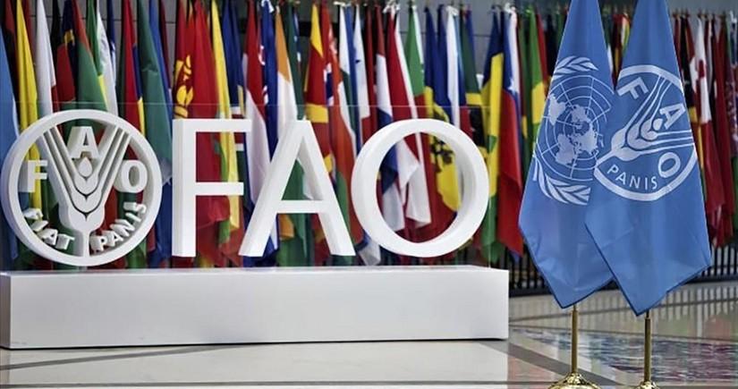 ФАО откроет представительство в Туркменистане