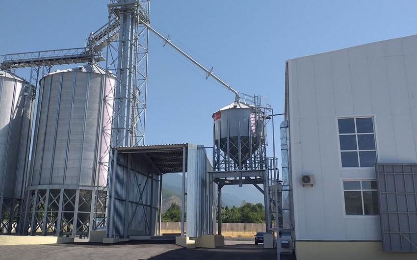 Dövlət Toxum Fondunun tabeliyində olan zavodlarda 5 000 ton toxum emal olunub