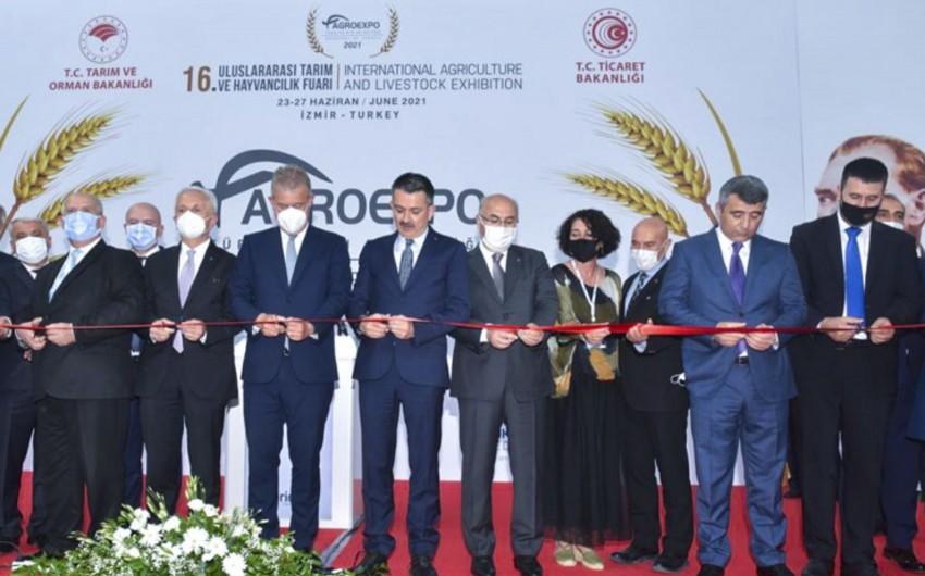 Azərbaycan Şimali Makedoniya ilə kənd təsərrüfatı sahəsində əməkdaşlıq edəcək