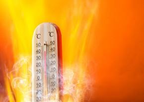 Azərbaycanda havanın temperaturu 44 dərəcəyədək artacaq