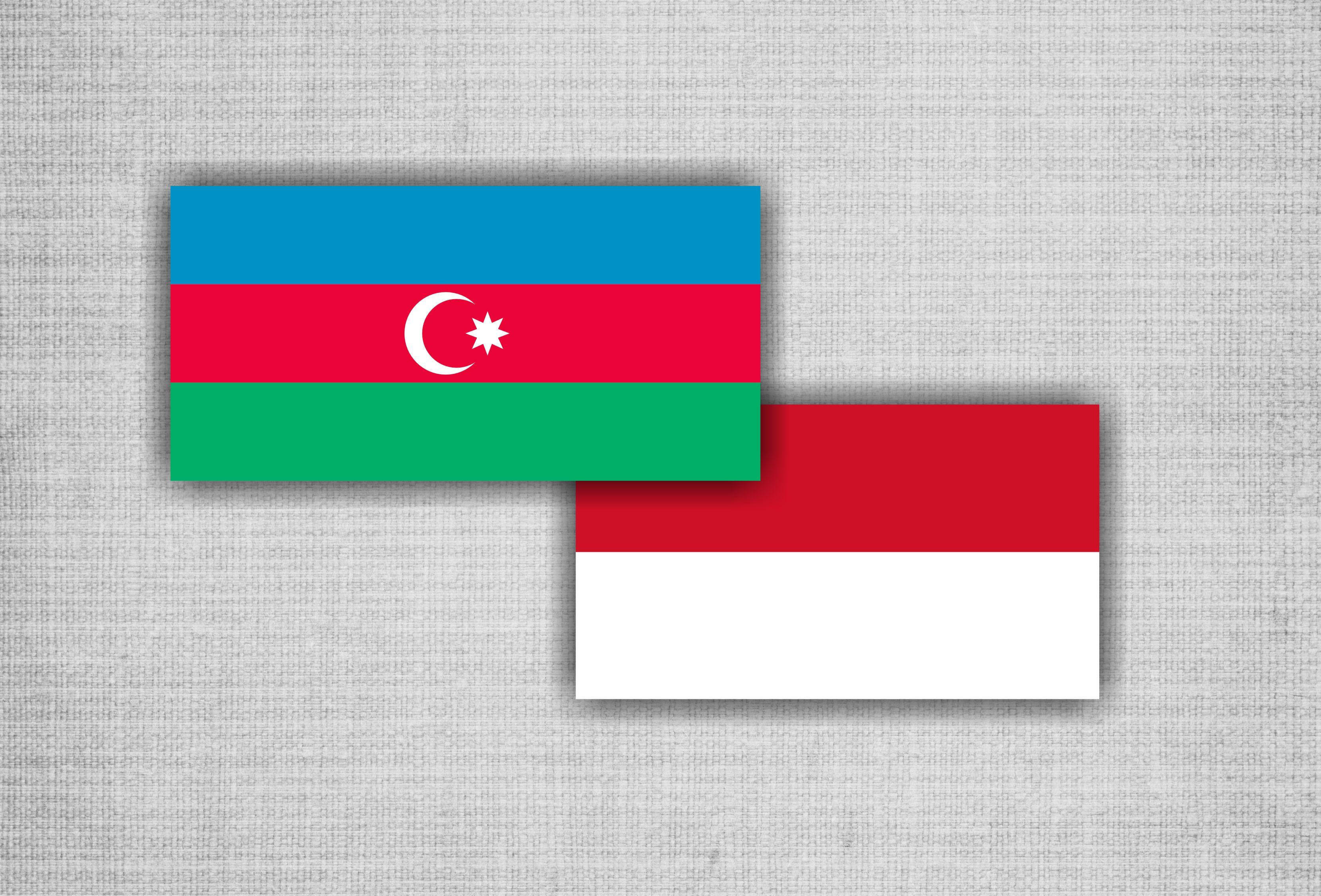 Delegation led by Deputy Chairman of House of Representatives of Indonesia to visit Baku