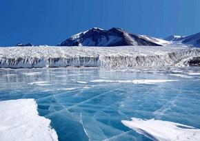 Antarktidada da koronavirusa yoluxma qeydə alındı