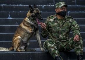 Kolumbiyada terrorçuların təyyarəni partlatmaq planının qarşısı alındı