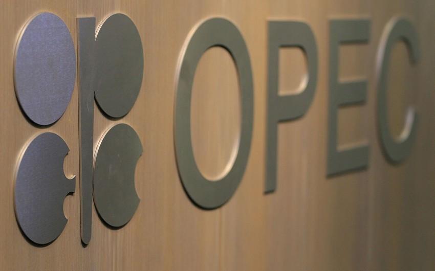 OPEC+ çərçivəsində iclaslardan birinin Bakıda keçirilməsi planlaşdırılır