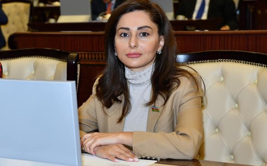 Deputat beynəlxalq tədbirdə Ermənistanda faşist ideologiyasının yayılmasından danışdı