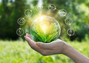 Banks under threat due to transition to green economy