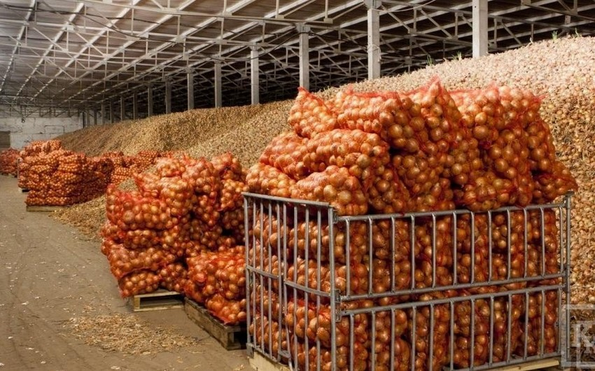 Azərbaycan Rumıniyaya 100 ton soğan ixrac edəcək