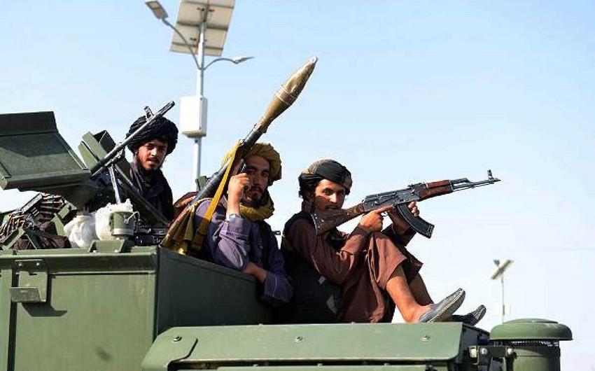 Талибы казнили в провинции Герат четырех человек