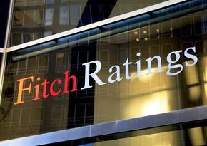 Fitch: Банковский сектор Азербайджана хорошо капитализирован