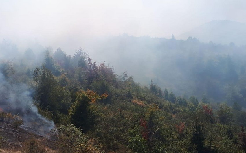 Death toll rises as Turkey works to contain wildfire