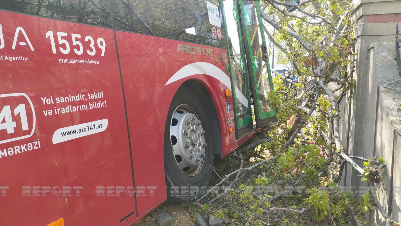 """""""BakuBus""""un avtobusu ağaca çırpılıb, xəsarət alanlar var - FOTO"""